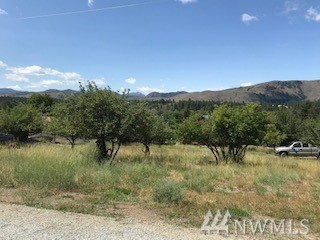 WINTHROP: Vacant lot, nearly a quarter acre.  Gently sloped with excellent views of the surrounding mountains, scattered apple trees, utilities available with city water and sewer in the street.