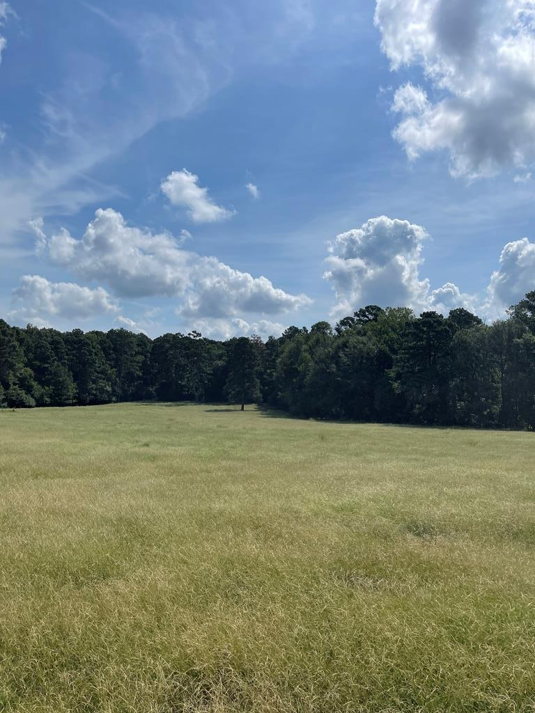 Here is the opportunity that you have been waiting for!!!!18.75 acres in Central Heights.  This is a gorgeous tract that is a rectangle and is a good mix of improved grasses and woods with marketable timber and a wet weather creek.  It has tremendous potential with County Road Frontage and over 800' of Highway 259 frontage also.  This property could  be used for commercial property and the rest as a residential development or for one single family residence.  It truly has many, many different uses and it situated in a prime location in a very desirable school district and a growth corridor of Nacogdoches County.  Please call with any other questions.