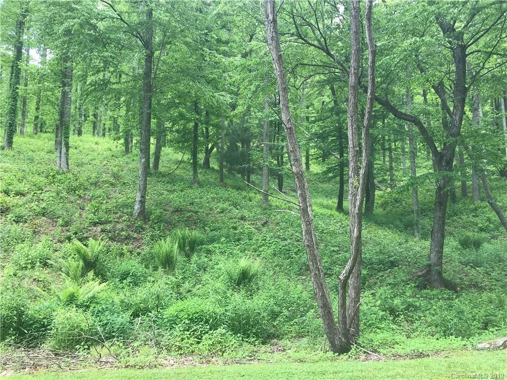Excellent 1.25 acre building site located in the desirable Vista at Blacksmith Mountain community, minutes to downtown Hendersonville and 30 minutes to downtown Asheville. Neighborhood with access to clubhouse, fitness center, pool and tennis.  Wooded for privacy with lovely long-range winter mountain views.