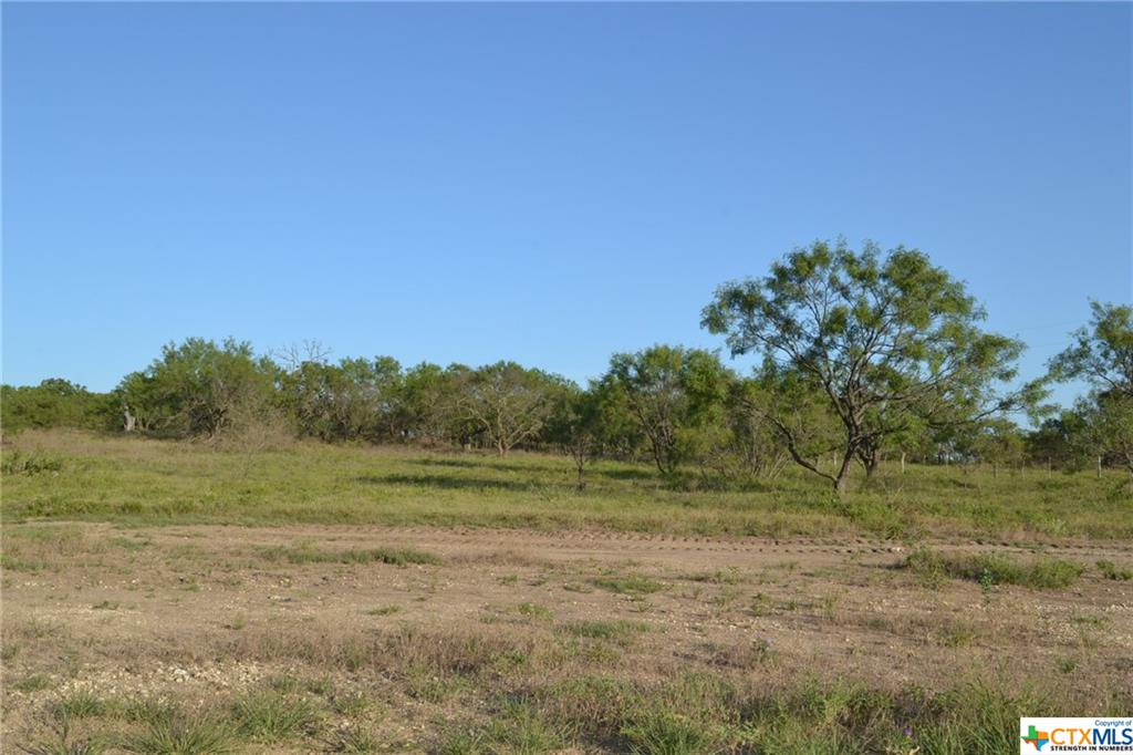1.238 ACRE LOT IN LAMPASAS RIVER PLACE PHASE TWO ~ Come build your dream home here in sought-after River Place in Kempner. River Place is a subdivision where neighbors walk, jog, and ride bicycles. Lots are mostly flat and some are gently sloping. River Place has many majestic old oak trees. Some lots have river frontage on the Lampasas River. Come home to the country, yet be a short drive to the amenities and conveniences of Fort Hood, Lampasas, Kempner, Copperas Cove, Killeen, Harker Heights, and the local areas. Austin is just over an hour's drive away. The County Roads in River Place are paved. An ornate entrance is being built for the entrance off FM 2313. Community mailboxes will be installed. You can choose any builder and build when you are ready, remembering that deed restrictions are in place. There is no timeline to build. Utilities for River Place are provided by Hamilton County Electric Coop, Kempner Water Supply, and on-site septic. The water lines and power lines are in. Come and visit Lampasas River Place today!