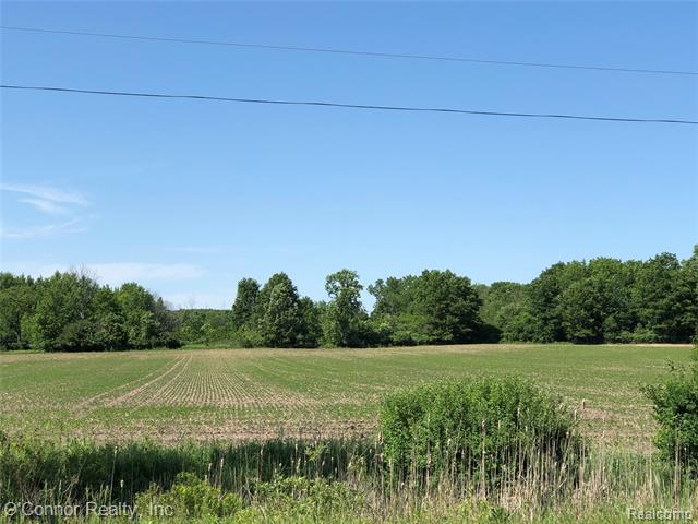 Excellent Agricultural property. 71 acres to grow your crops.