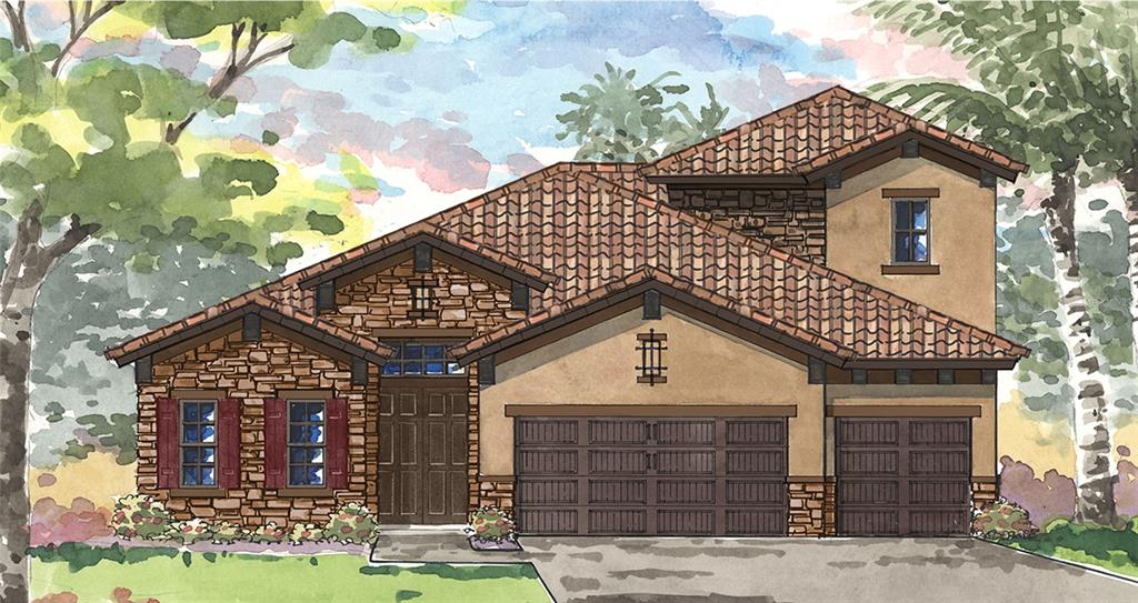 11313 Hawks Fern Drive, Riverview, FL 33569