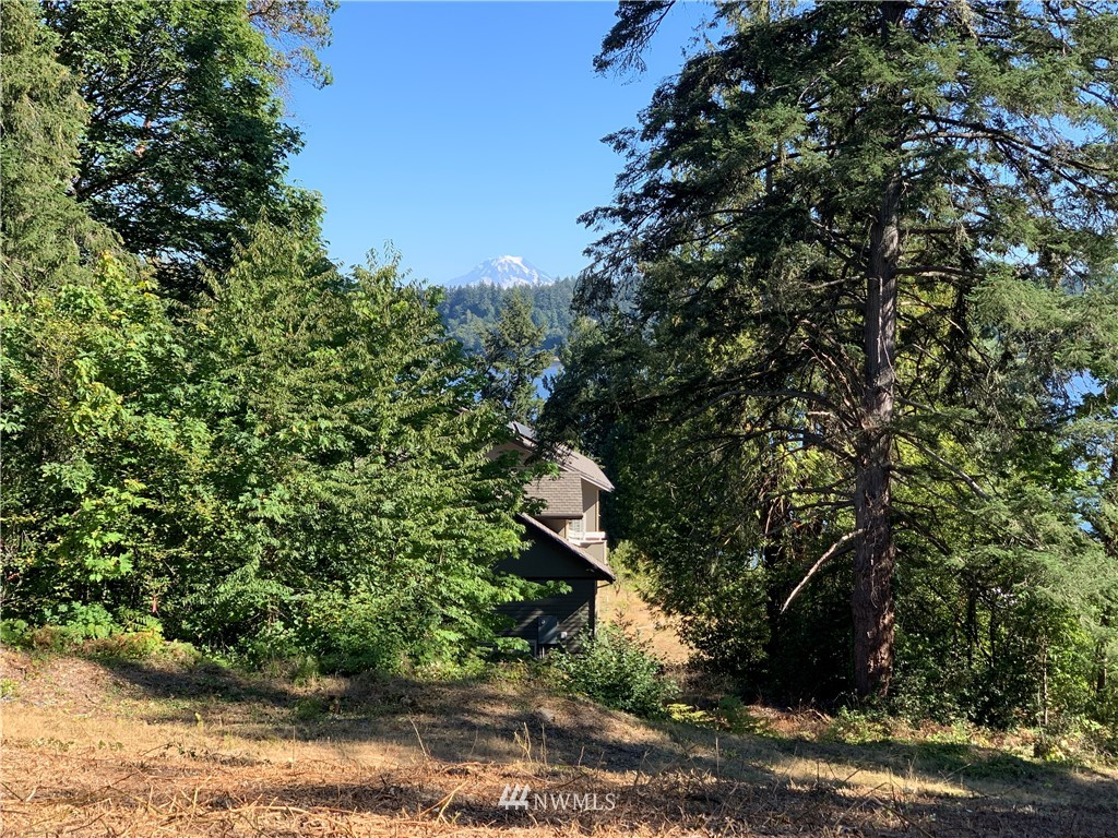 Beautiful VIEW lot with top of the world Henderson Bay and Mt. Rainier views!  Includes 5 bedroom septic already installed, your own well, and spectacular sunrises! You'll love the privacy, yet just a short walk to the beach at the Purdy Spit, boat ramp and Massimo's! Just 5 minutes from Highway 16, Gig Harbor North, shops & St. Anthony's. Four of the property corners have been marked. This lot is 3/4 acre, so grab your architect and dream BIG!