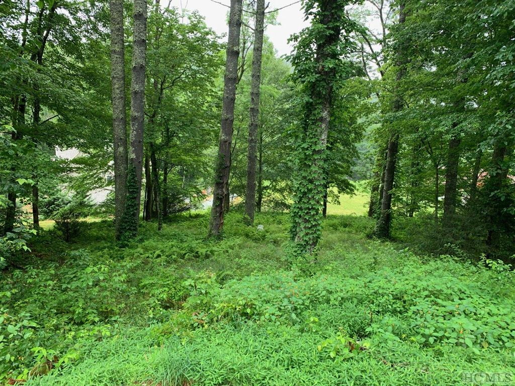 Wonderful building lot in prestigious The Point at Lake Glenville subdivision with fantastic lake views.  The Point at Lake Glenville is located close to Cashiers and Glenville and features a community pavilion with a stone fireplace, a beautiful wildflower garden and dedicated boat slip.  Enjoy lake living at its finest!!
