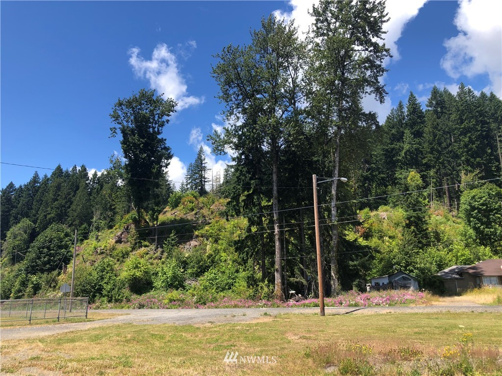 4.64 Acres Small Town Mixed Use property directly across the road from White Pass Schools and up on a hill with a view! Build here to live, set up a business, or whatever you like, and do it all with a gorgeous territorial view over the valley! Power and water at the street.