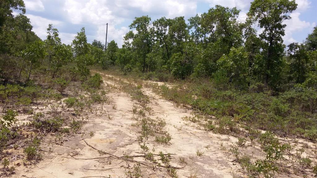0 Hill Lane, Chipley, FL 32428