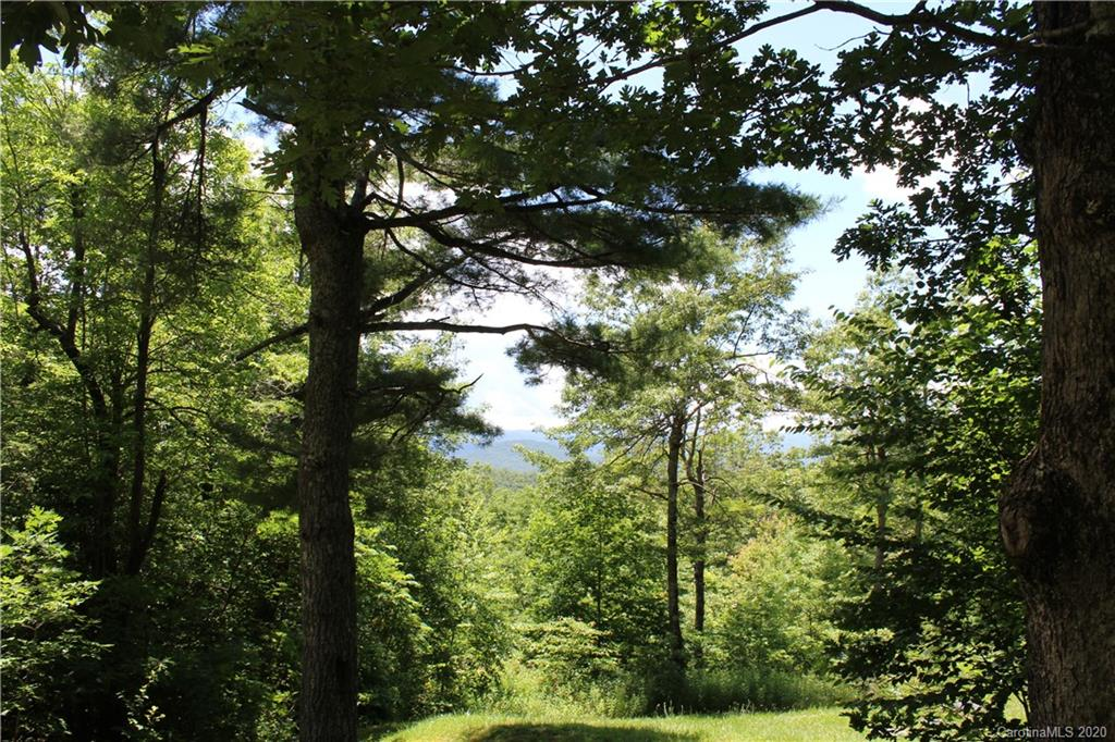 Year round short range mountain VIEWs.  Easy building site conducive to a main level and lower level home with a walkout lower level.  Plenty of Rhododendron and Mountain Laurel.  Great community to hike and bike ride!