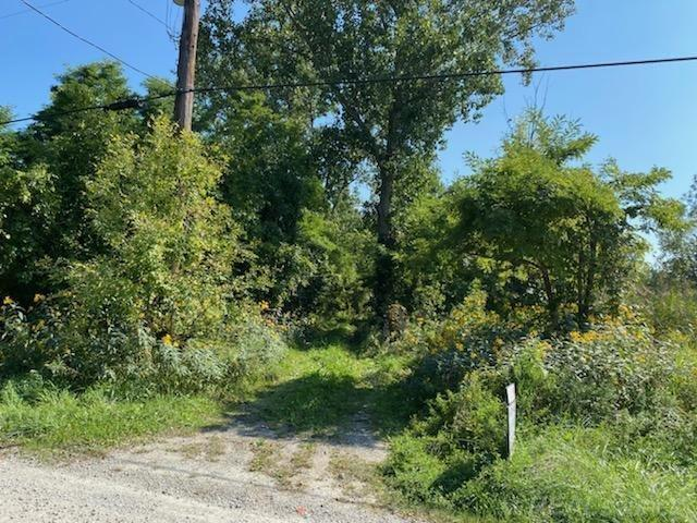 Beautiful 10.64 acre parcel with a spot cleared in the wooded lot for building your dream home. Gas at the street. Underground electricity runs along the West side of property. Well and septic needed. No Trespassing please make appointment through showing time.