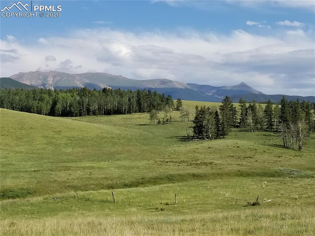 South Ute Pass Ranch 332 +/- acres. excellent equine or cattle property with Twin Creek bottom ground and good access. One of the few remaining larger parcels available in Divide. Pikes Peak views with development potential.