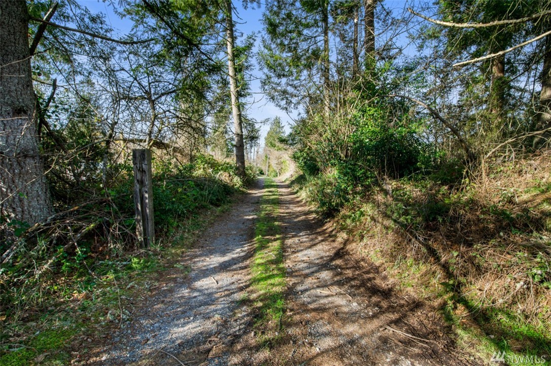ATTENTION BUILDERS, INVESTORS AND HOME BUYERS!!! Build your Dream Home!  Beautiful, private 6.96 acre lot. Easy access to Issaquah, Hobart, and Maple Valley via I90, I405, WA169, and WA18.  All feasibility completed, almost ready for permits. CAD, wetland delineation, Geotech, etc. completed.  Septic/well design, and prelim building plans completed.  Total of 6 lots and 32 acres available!