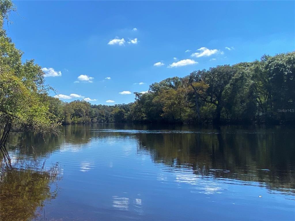 29466 River Run, Branford, FL 32008