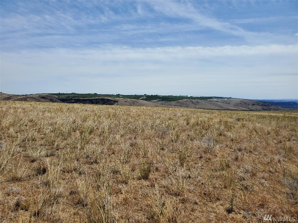 VIEW!!!  Fantastic view of the Columbia River from this 46 acre parcel North of Crescent Bar.  Good homesite with South slope in a great recreational area.  Minutes from the Columbia River near Crescent Bar.