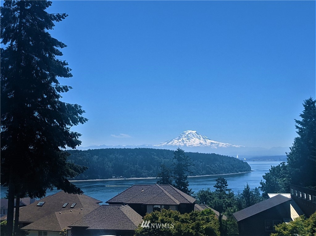 The casually elegant abode where EVERYONE will want to stay!  Big views of Rainier & Colvos Passage in Gig Harbor's beautiful Devine Estates are just the beginning! You won't believe until you see...2 full kitchens/living areas, 3 master suites w/ en-suite baths & deck/patio access (each on a separate level), 4 beds+office /4 baths total, separate RV garage w/ 12 ft door, wine cellar/tasting room, shop, AND covered outdoor rec space w/ TV's, Hot tub, Pizza oven!  Pristine - One of a kind!!
