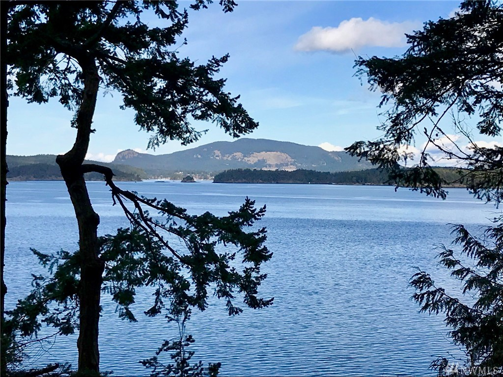 Bring your house plans – this waterfront building lot is ready for your dream home!  Enjoy views across San Juan Channel to Deer Harbor and Turtleback Mountain, framed by beautiful Douglas Fir trees, from your multi-level or daylight basement home.  Located just 2.5 miles from Friday Harbor, this lot has University Heights water available, driveway in, and building site partially cleared.