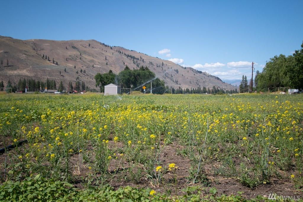 Ready-to-build in Carlton on 2.9 level acres w/nice views up and down valley. 30-gpm dom well + 30-gpm irr well to support your country home and small farm. Secure water rights, new 400 amp srvc, 4-br septic permit approved end of May 2020. Complete kit for engineered 40 x 40 Titan Steel shop ready to assemble. New 'pod' irrigation system/riser line. 2 acres in rotational cover crop. Perimeter deer fence. Storage shed. Fruit/nut trees (~ 200) ready for fall planting.