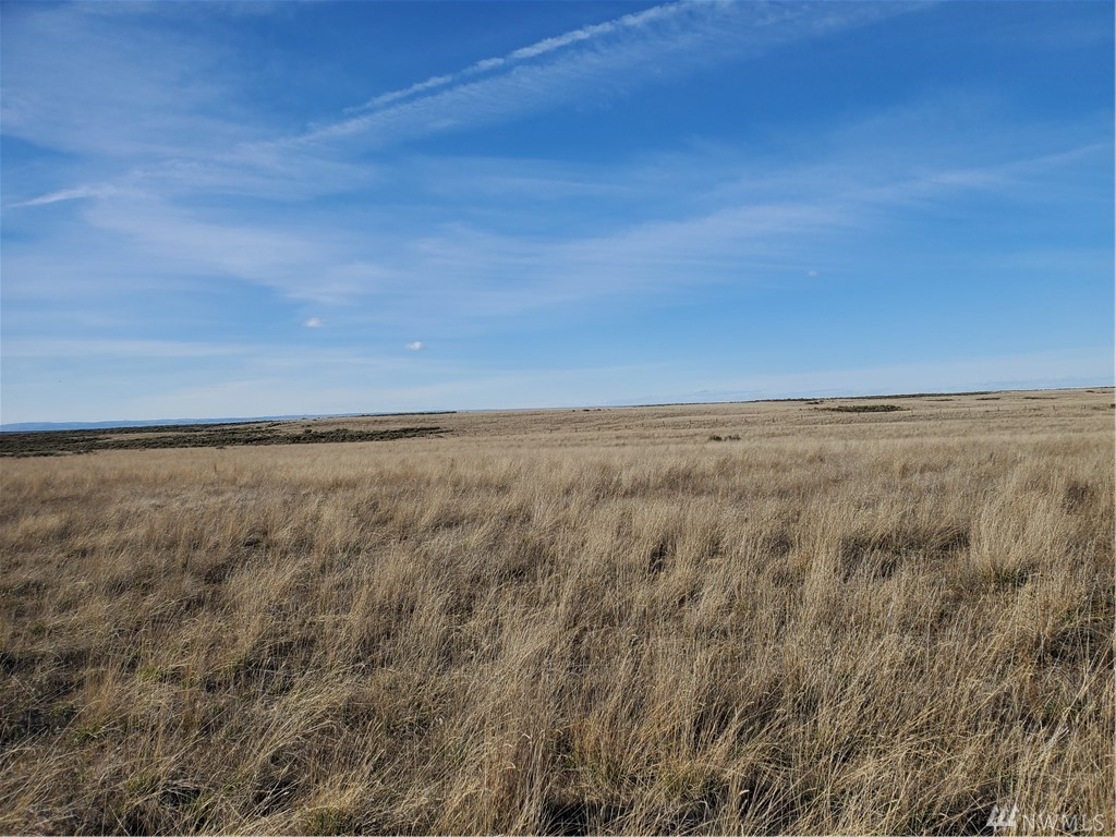 640 acre section, a part was in CRP. Great area to develop into home sites
