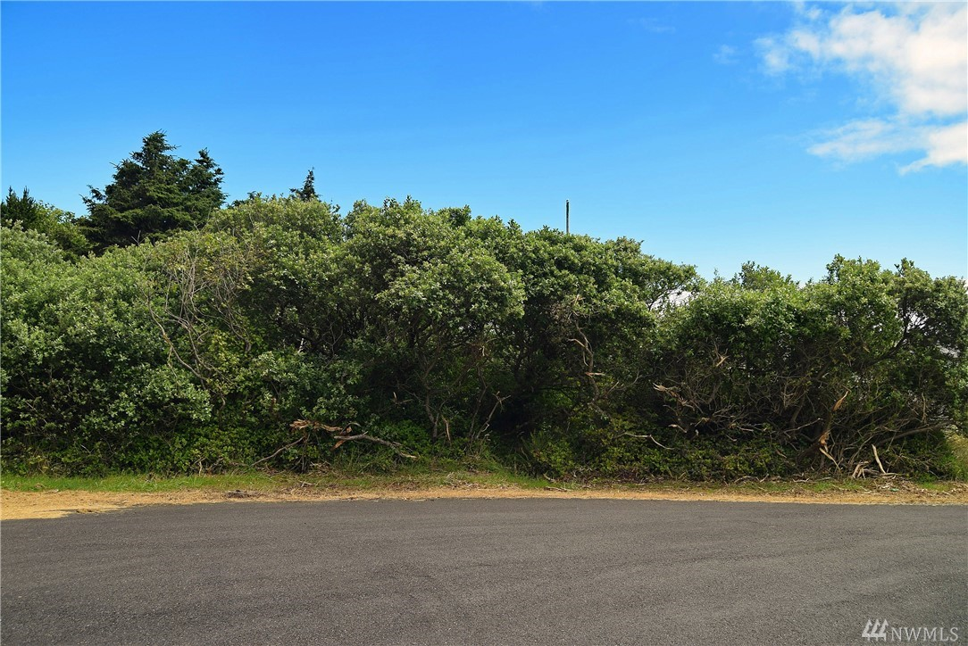 Awesome commercial lot in downtown Ocean Shores. Extra large size in a great neighborhood close to the beach with water, sewer, and power ready to hook up.  LID paid in full. Property is Out of the Community Club.