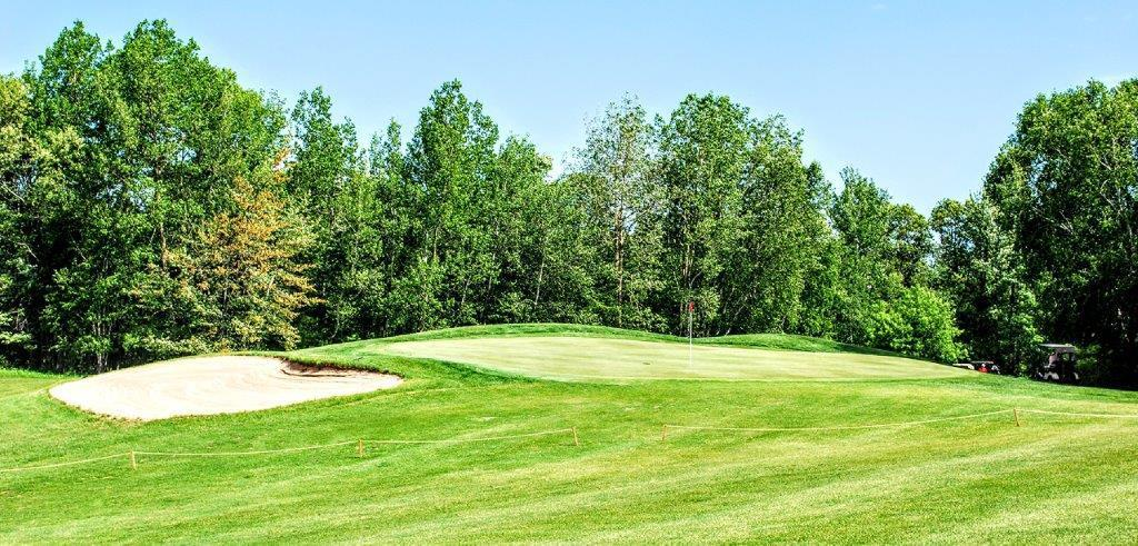 WHITEBIRCH GOLF COURSE LOT! This heavily treed culdesac lot lies on the 8th green at Championship Whitebirch golf course. Great walkout possibilities and at the end of a culdesac on Osceola Circle.