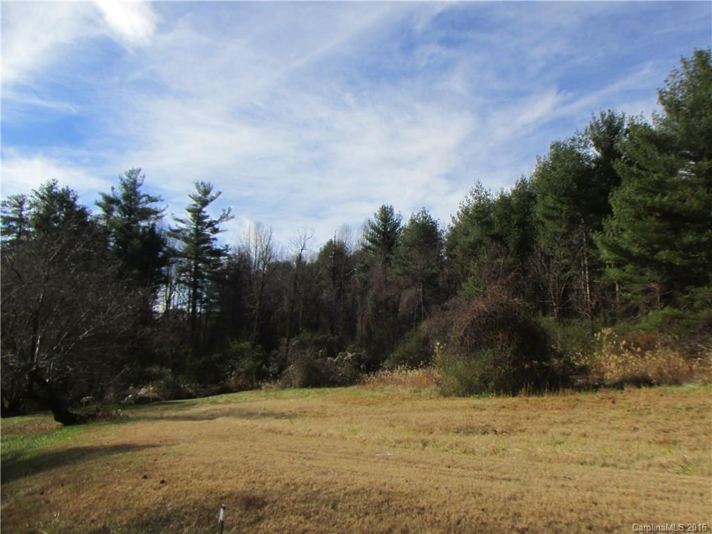 Beautiful wooded acreage in a great Flat Rock location with views and privacy.   Perfect for an upscale subdivision or a private estate.   This property has been in the same family for almost a century.