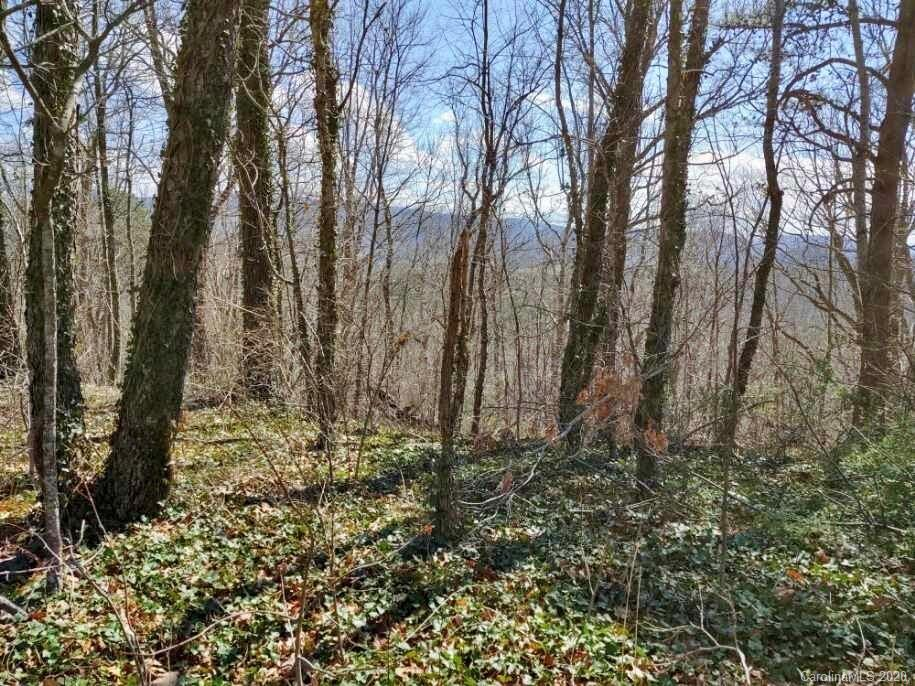 Level building lot with view potential! Situated on nearly half of an acre, this lot on a private road is minutes from the amenities in Fairview and approximately 20 minutes to downtown Asheville. Also convenient to Lake Lure and Chimney Rock. The lot contains both a cleared area as well as trees. Several lots in the community utilize shared well system; a buyer could investigate a private well if desired.