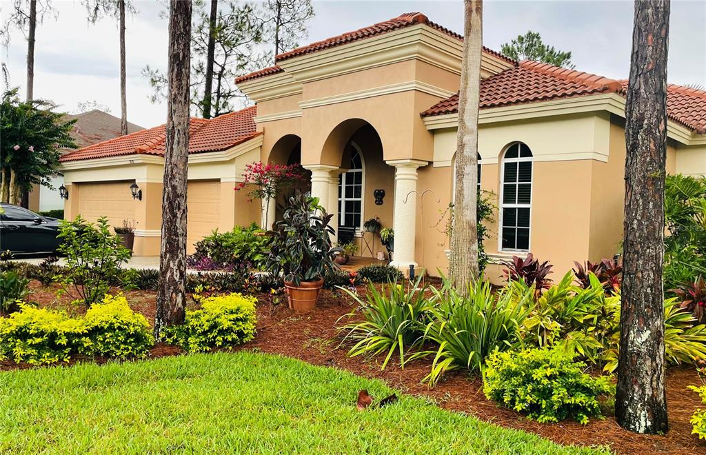 2878 Grey Oaks Boulevard, Tarpon Springs, FL 34688