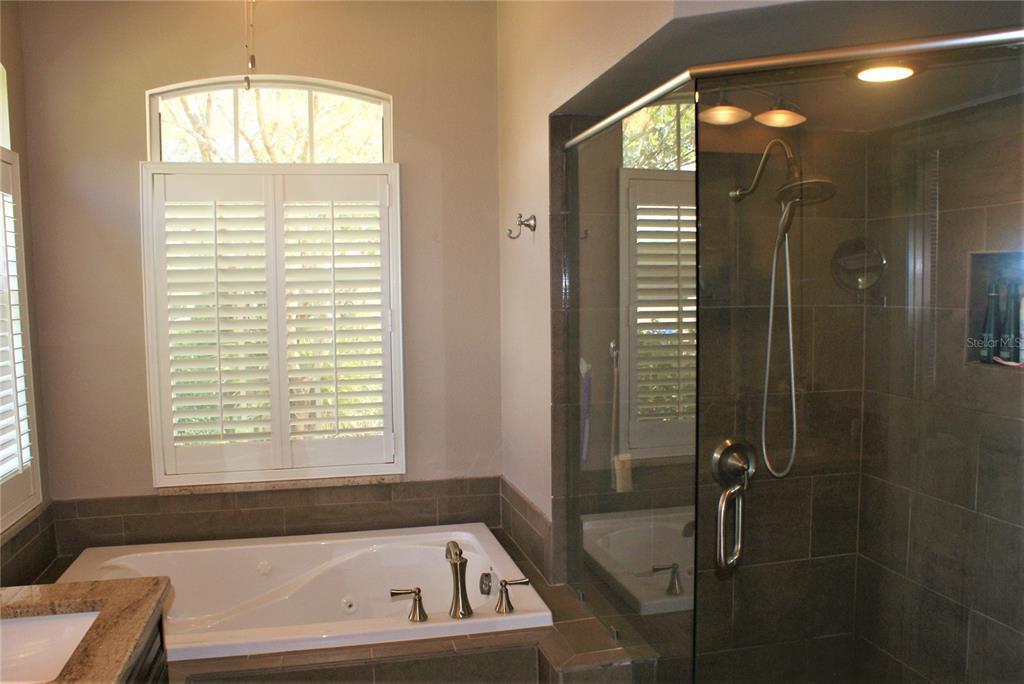 Master Bath Whirpool Tub and Tile Shower