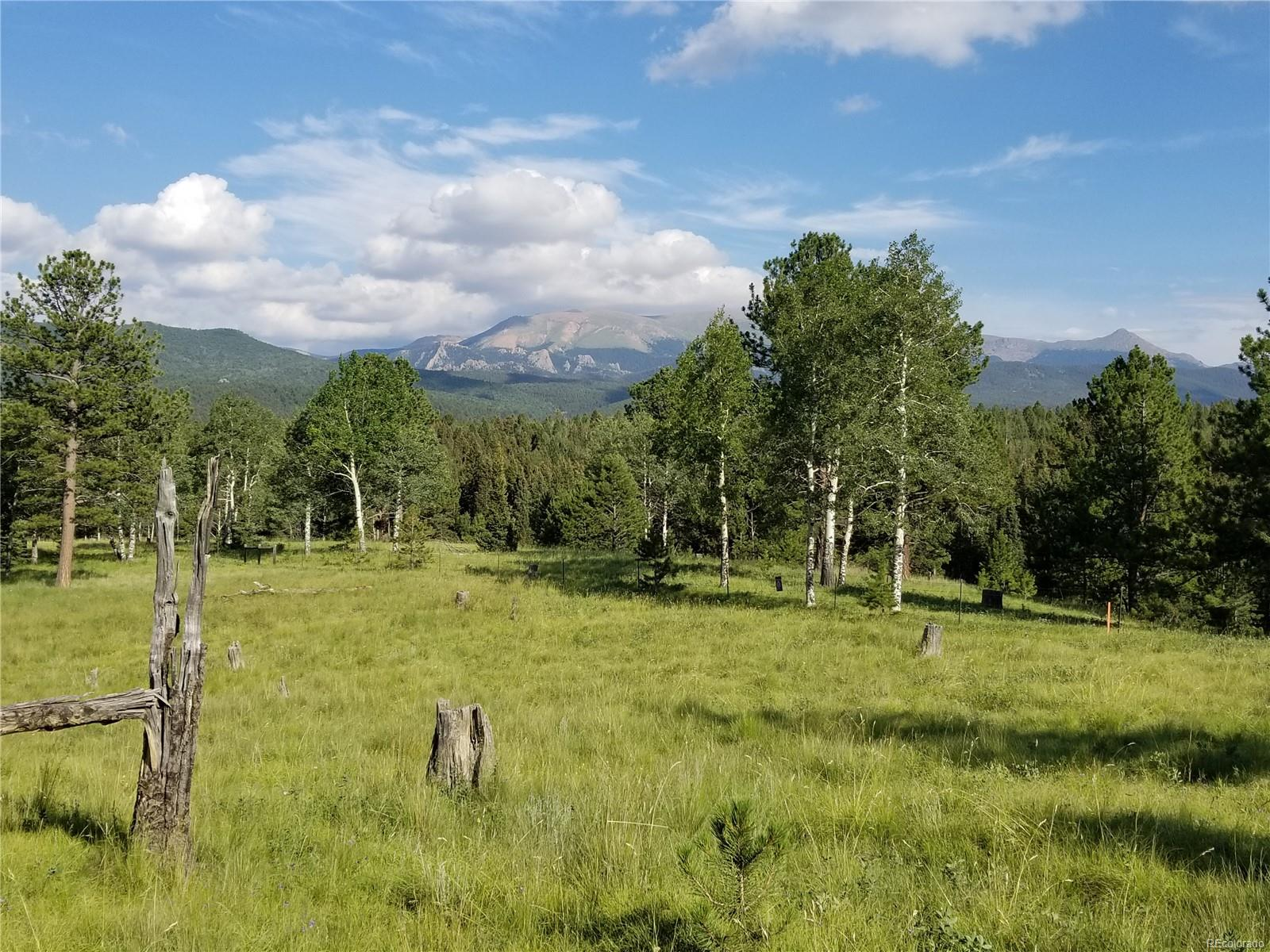 This 263 +/- acres is bordered on south line by Mueller State Park. Twin Creek runs through this property historically used for cattle grazing. Could be developed into 35 acres parcels. Amazing Pikes Peak views. Perfect mix of pine, spruce, aspen and meadow, this ground has many incredible building sites with views of Pikes Peak from the whole parcel but the south west corner has the most incredible view. Access can be from Hwy 67 with additional access from Sherwood Forest subdivision.