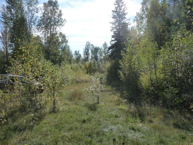 6419 CLEARWATER VALLEY ROAD, Clearwater, at $149,000