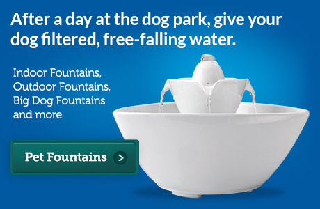 -Pet Fountains 2013