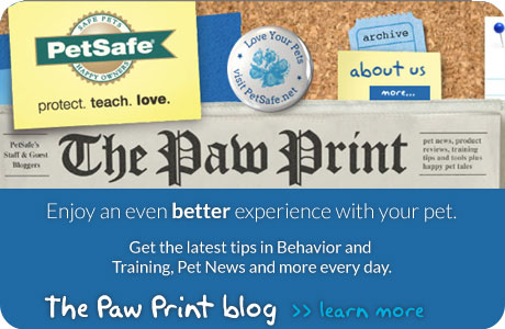 Blog 2012