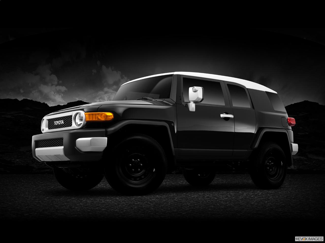 toyota fj cruiser rocker panel guard advance auto parts. Black Bedroom Furniture Sets. Home Design Ideas