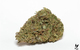 BLUE SUGAR MAMA - 21% THC - SATIVA - 1/8 FLOWER JAR - (FROM: FLOW KANA)