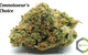 SOUR BAND - SATIVA - 19.7% THC (From : Connoisseur's Choice)