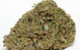 EXTREMA - SATIVA - 24.9% THC (From : Connoisseur's Choice)
