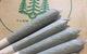 Sativa Harvest 5 Pack Prerolls (4.5-5 g total)