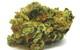 Pineapple Funk (Sativa/Organic)