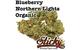 Blueberry Northern Lights - Organic