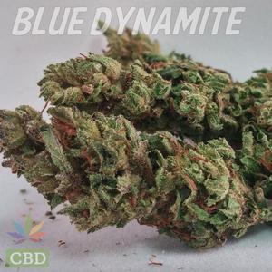 Cannabis Strains High In Cbd And Thc