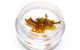 Glasshouse Shatter Extract (Hybrid)