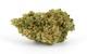 JACK HERER - SATIVA - 20.6% THC (From : Caribou Farms)