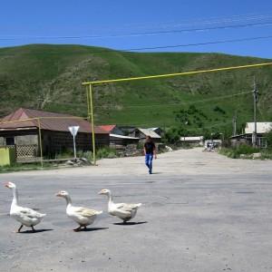 Լուսանկարը՝ Լուսինե Բաղդասարյանի