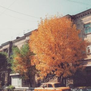 Լուսանկարը` Լեյլի Թադևոսյանի
