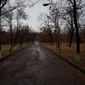 Լուսանկարը` Լիլիթ Վարդանյանի