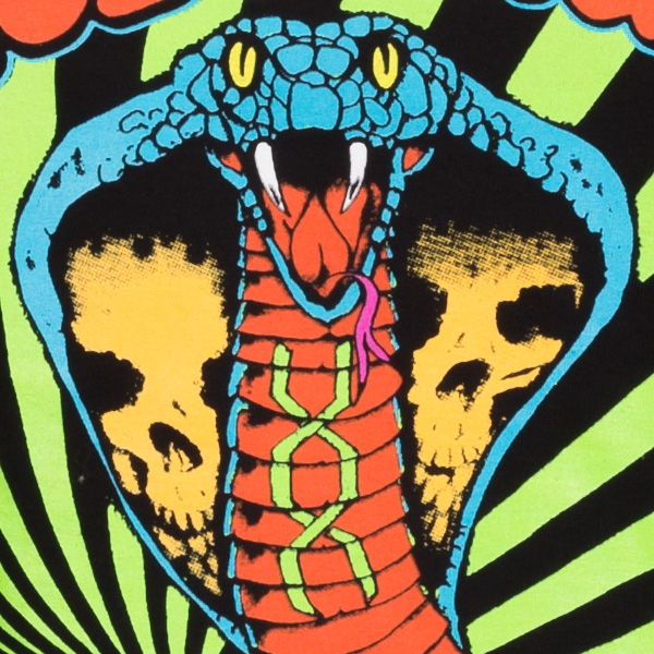 Hola-Cobra