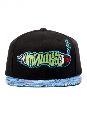 Smoke 2 Joints Snapback