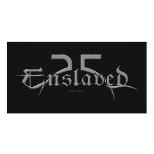25th Anniversary Logo (Silver)