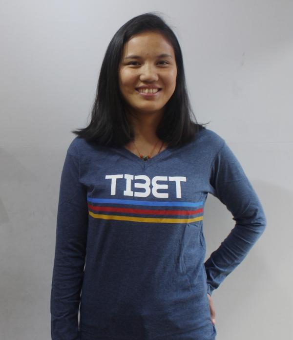 Tibet Flag color strips