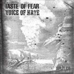 Taste of Fear | Voice of Hate Split CD