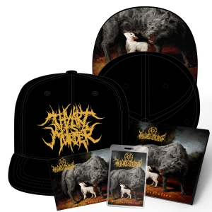 Dear Desolation Snapback Bundle