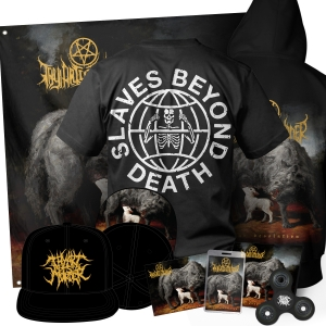 Dear Desolation Collectors Bundle